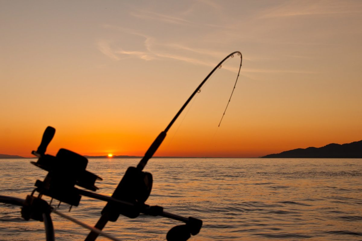 Eine krumme Angelrute, im Hintergrund geht die Sonne vor Vancouver Island unter.
