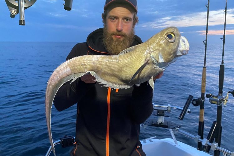 """Zwei schwedische Angler stellen einen neuen Rekord für den """"Rundnasen-Grenadier"""" auf. Und das drei mal hintereinander!"""