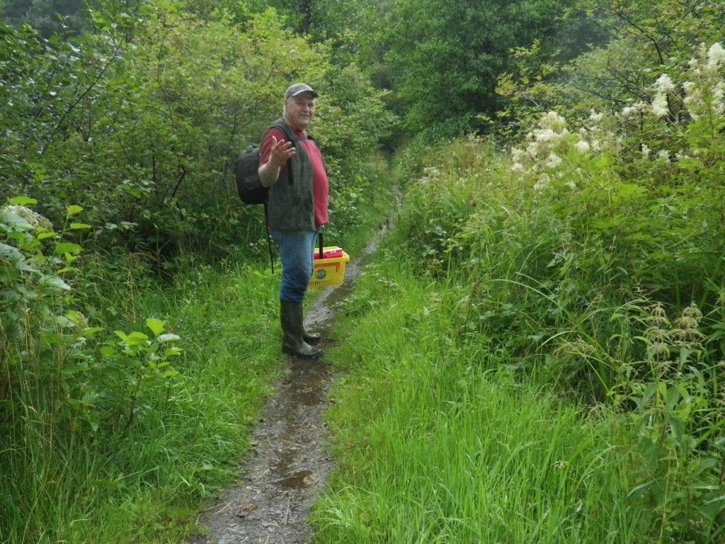 """So sah das Angeln am Wochenende für Thomas Pruß aus. Pilzsuche statt Fisch: Ein """"Waldspaziergang"""" der extrem nassen Art. Aber so etwas ist im Sommer echt erfrischend. Foto: T. Pruß"""