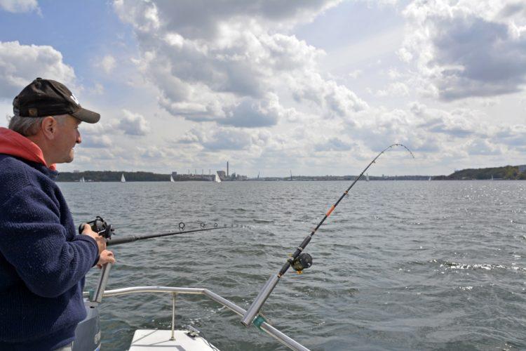 Deutschlands fischreichster Fjord: K&K 88 verrät die besten Bootsangelplätze in der Kieler Förde. Foto: S. Rose