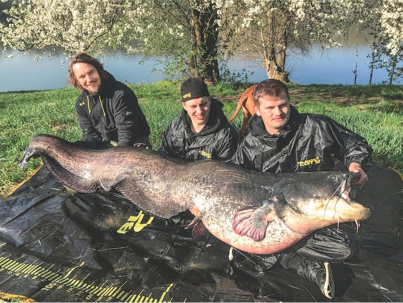 Seminarleiter Stefan Seuß und zwei weitere sitzen auf dem Boden. In ihrem Schoß der 251 Zentimeter lange Wels.
