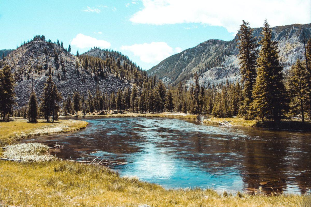 """Der neue Fliegenfischer-Film """"Mending the Line"""" wird an den schönsten Flüssen im Yellowstone-Nationalpark gedreht. Foto: Austin Farrington / Unsplash"""