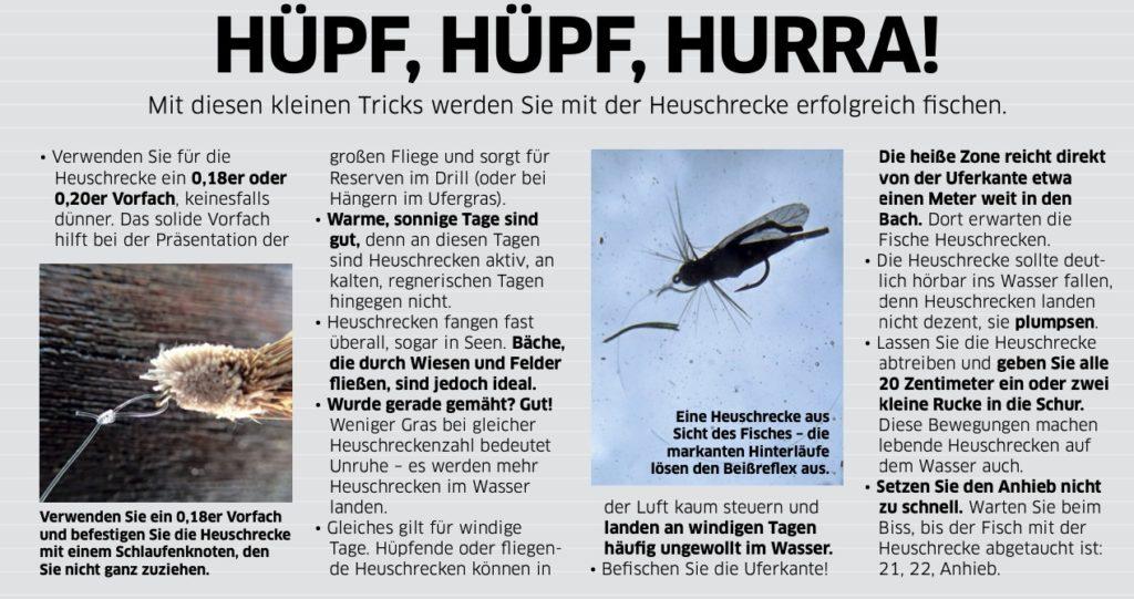 Tipps zum erfolgreichen Fliegenfischen mit Heuschrecken.