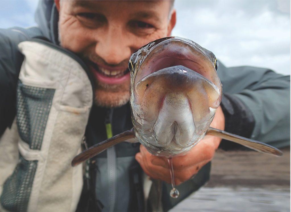 Angler hält Rapfen in die Kamera.