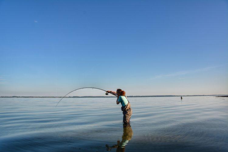 Ein Strand für große Fische: Waabs in Schleswig-Holstein. Foto: Rose