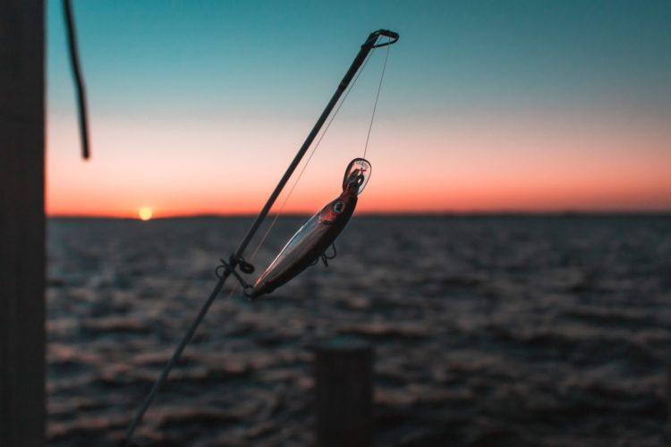 Das Angeln am Wochenende lief für unsere Angler nicht wirklich gut. Trotzdem hat sich das Wochenende gelohnt, denn es wurden Pläne geschmiedet, Erkenntnisse gesammelt und gute Taten vollbracht.